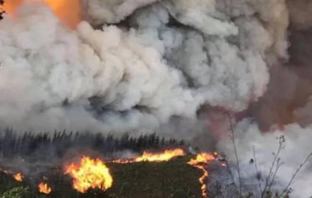 Knysna fires.jpg